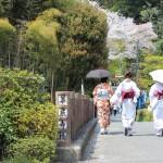 京都の縁結びで実際に効果のあった鈴虫寺とはどんな所?