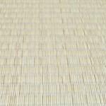 新しい畳にカビが発生する原因と取り方 エタノールの選び方は?